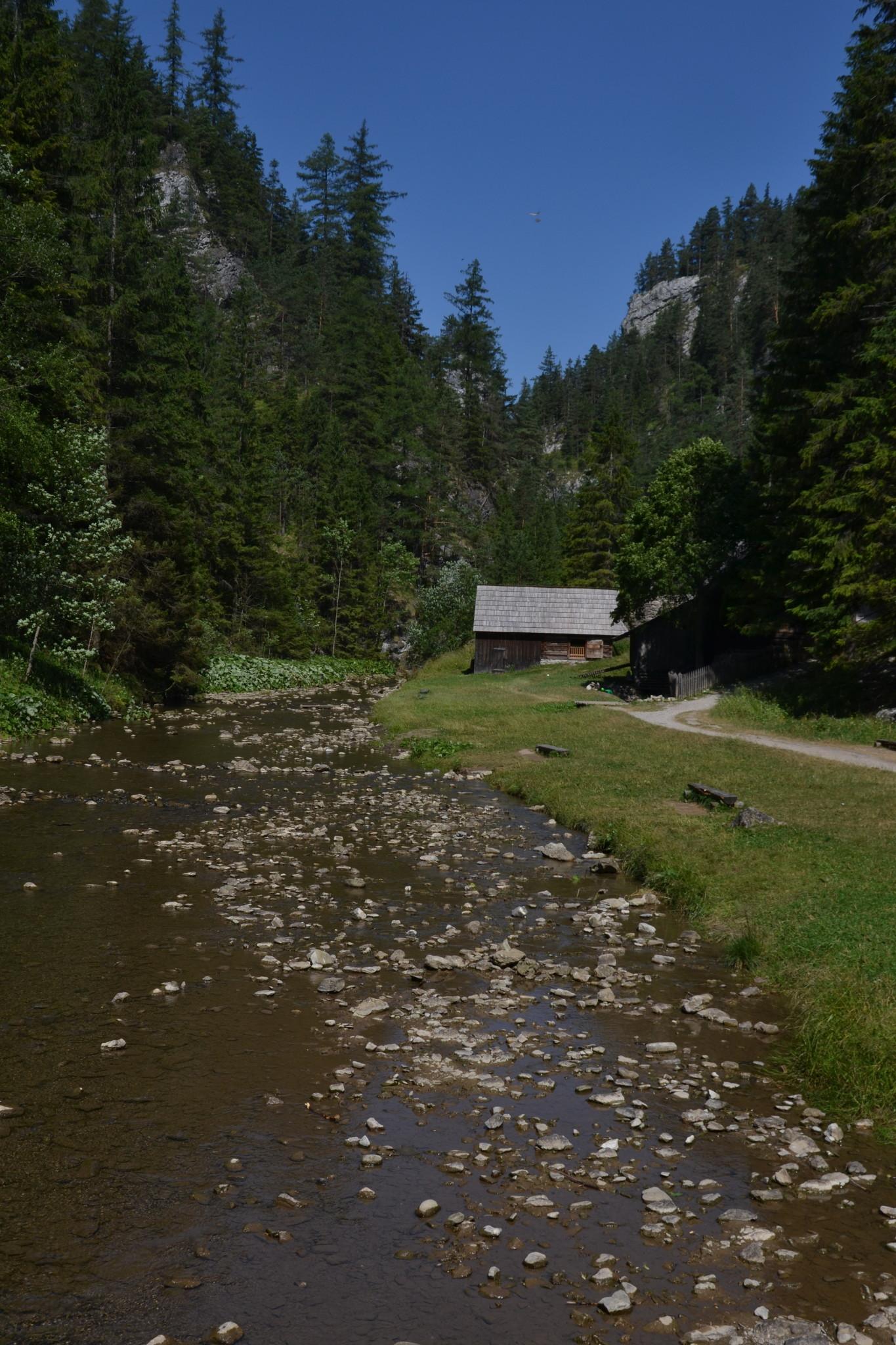 Zapomenutými dolinami Chočských vrchů