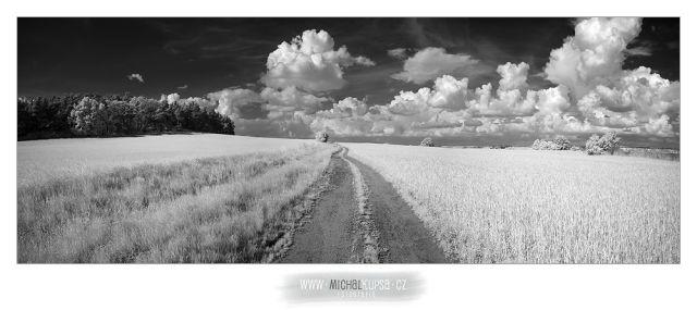 Krajina polí