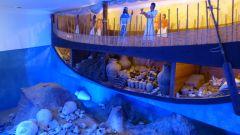 Muzeum podmořské archeologie
