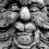 Lví hlava z portálu