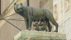 Romulus a Remus s vlčicí