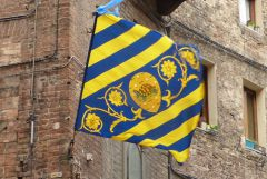 Siena - Tartuca - vlajka