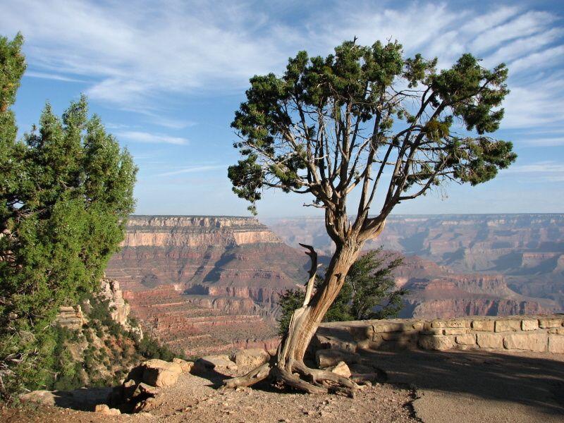 Ranní Grand Canyon