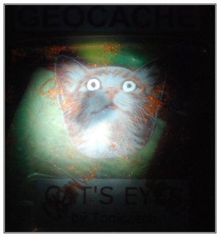 GCH2XZ - Cat's eyes
