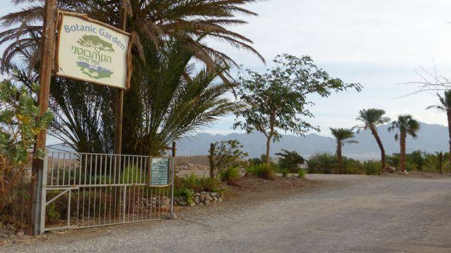 Eilat - botanická zahrada