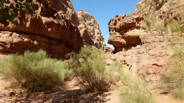 Wadi Rum - kaňon