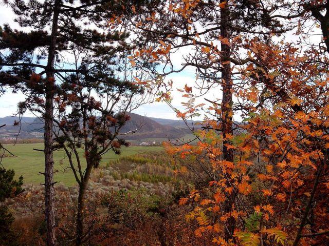 Výhled z kopce (bez kešky)