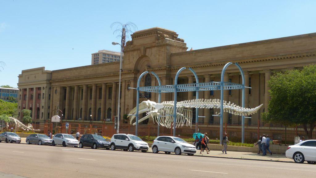 Pretoria - přírodovědné muzeum