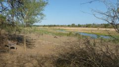 Marloth Park - Crocodile River