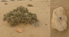 Cache v Namibii v poušti Namib