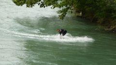 Bern -řeka Aara