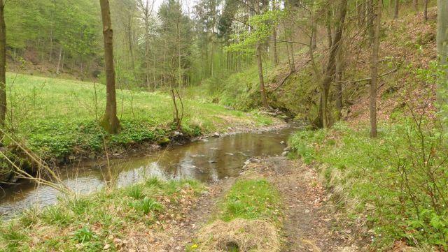 Údolí Stiefernbachu