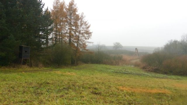 Pranhartsberg - biotop