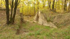 Slovanské opevněné sídlo