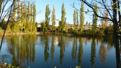 Eggenburg - městský rybník