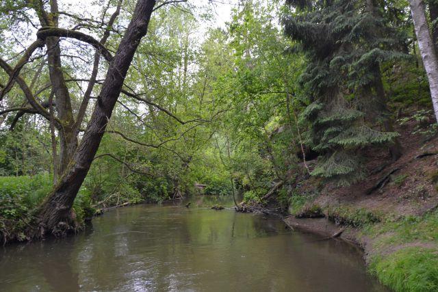 12 05 26 15.29.23 Občas řeka Ploučnice vytvářela krásná romantická zákoutí