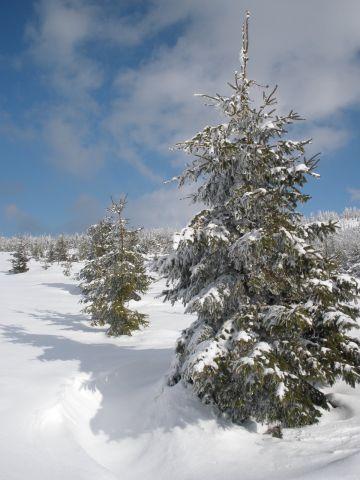 13 03 16 14.36.28 Sněhová nádhera