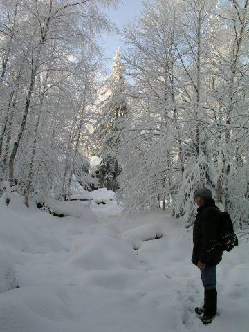 05 12 10 11.45.58 Nádherná zasněžená cesta Na Bledne Skaly