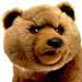 Rychlost stahování přes Geocaching Live - poslední příspěvek od medved2