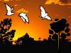 HQ Newsletter 14-10-2014 - Noční odlov už není jen pro upíry